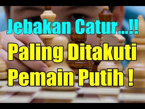 Hi kawan kawan pecinta catur. Selamat datang di Catur Talk Indonesia. Video kali ini sesuai dengan voting sebelumnya. yang....