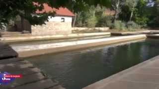 Ifrane, la Petite Suisse du Maroc | Le Journal Toulousain | Fall 2012