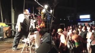 Vladiwoodstock Live at Bardentreffen 2013