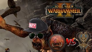 Greenskins vs Tomb Kings | TROLL META CONFIRMED?: Total War Warhammer 2