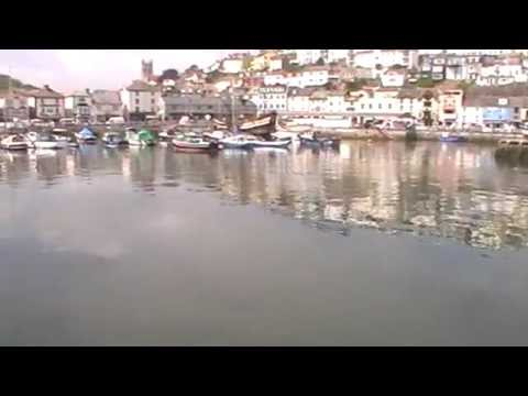 A Barrel Jellyfish In Brixham Harbour