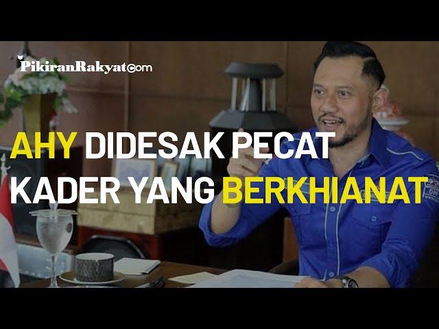 Isu Kudeta Memanas, Seluruh Ketua DPD Partai Demokrat Kompak Minta AHY Pecat Kader Berkhianat