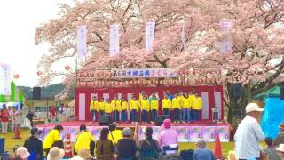 第6回中郷石岡さくら祭り(2016.04.10)