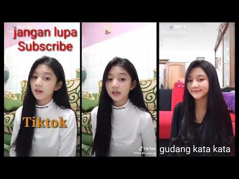 Tiktok Terbaru Versi N.lidiawaty  Tiktok Indonesia