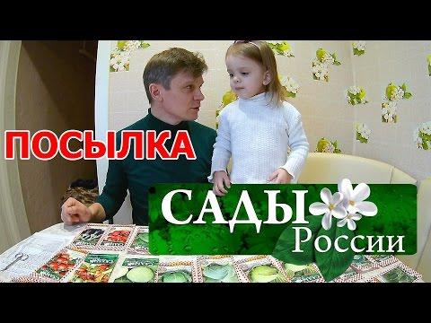 """Семена на 2017 год. НПО """"Сады России"""" Челябинск"""