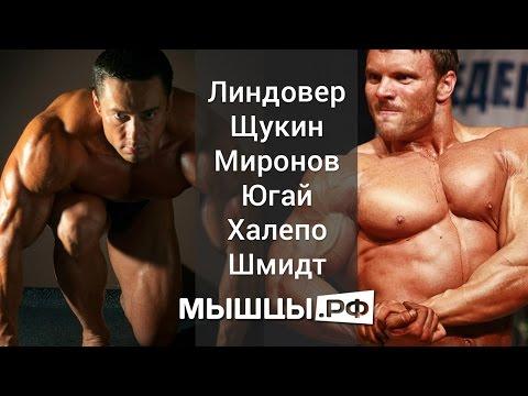 Почему болят мышцы после тренировки? - Движение – жизнь
