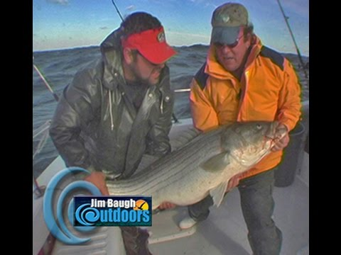 How to catch  Rockfish on board the Smoking Gun Jim Baugh Outdoors TV