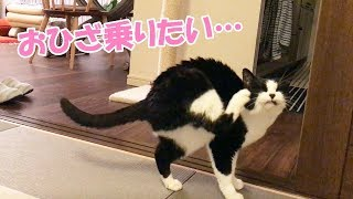 ブログも更新しました♪ http://musubiyori.com/archives/3774 お料理サ...