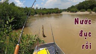 Chèo thuyền đi câu cá chạch đầu mùa ở sông Bé!!