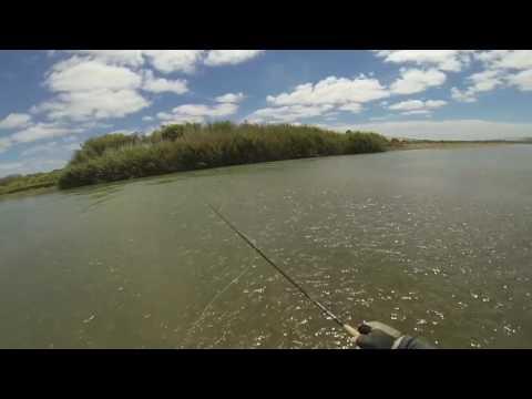 Fly Fishing Orange River