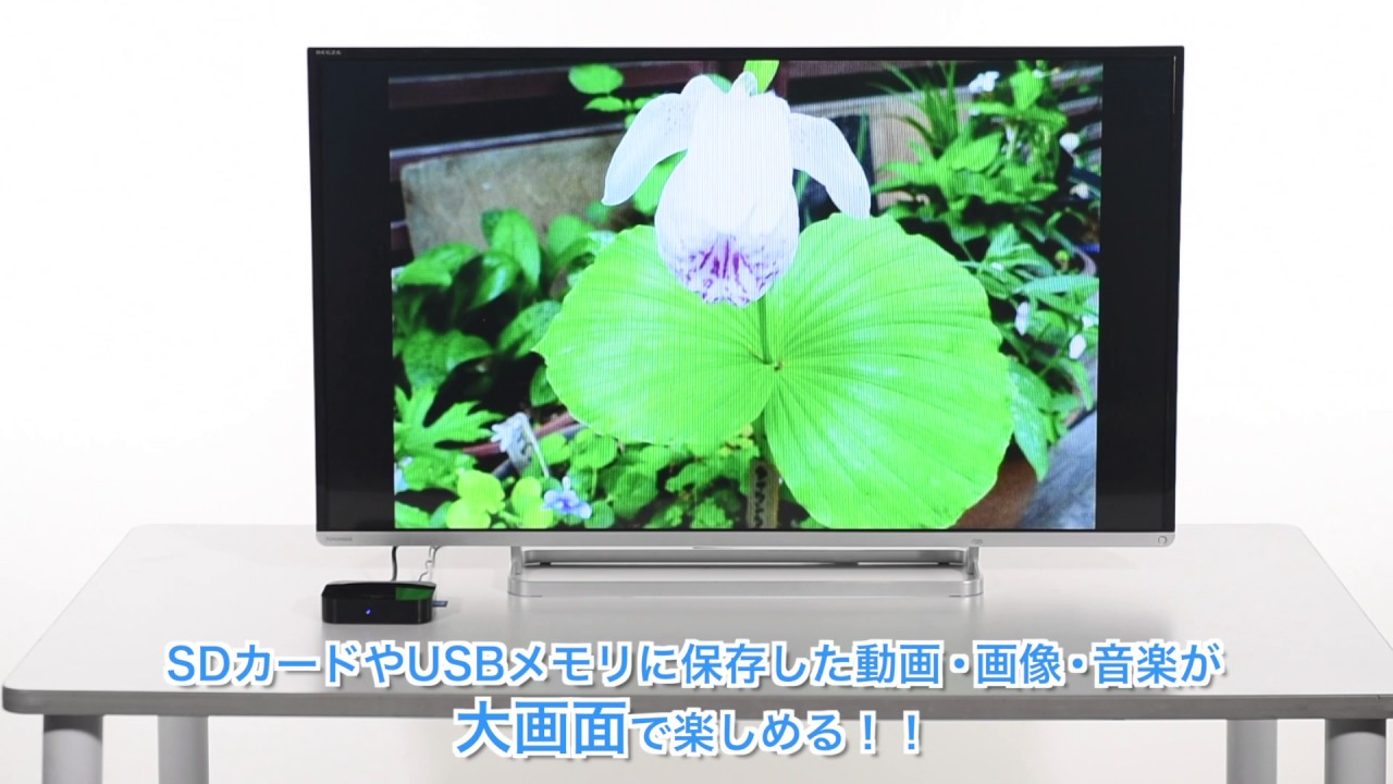 584f6ede29 マルチメディアプレーヤー(SDプレーヤー・USBプレーヤー・テレビ再生)400-MEDI001の通販ならサンワダイレクト
