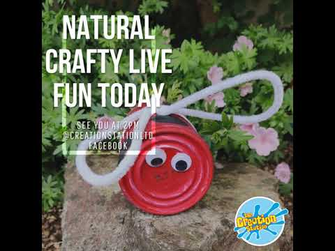 Natural Crafty Live Fun Today