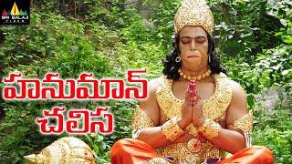 Hanuman Chalisa Telugu Full Movie | Vindu Dara Singh, Suman, AVS