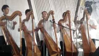 la bamba en el 9o festival de arpas de cerrillos veracruz
