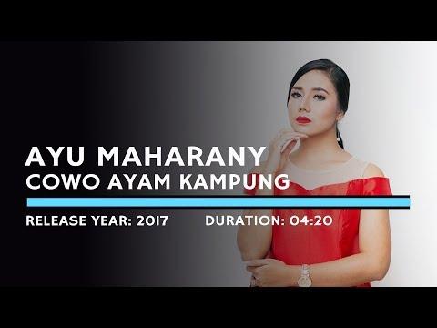 Ayu Maharany - Cowok Ayam Kampung (Lyric)