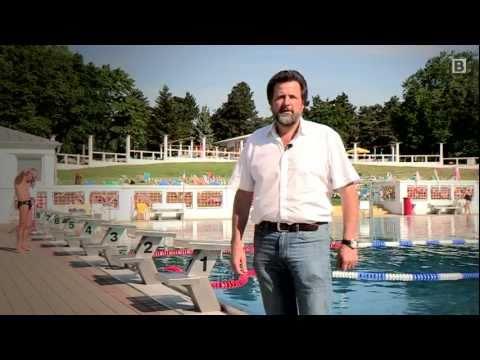 Die besten Schwimmbder in Wien (Sommer) - crowdranking
