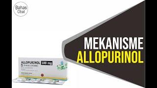 Mekanisme Allopurinol