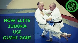 How Elite Judoka Set up, Use and Flow from Ouchi Gari for Judo / BJJ