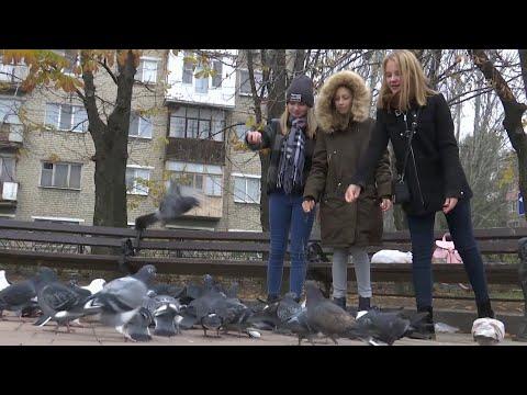 Денис Пушилин раскритиковал план Киева по переселению жителей ДНР.