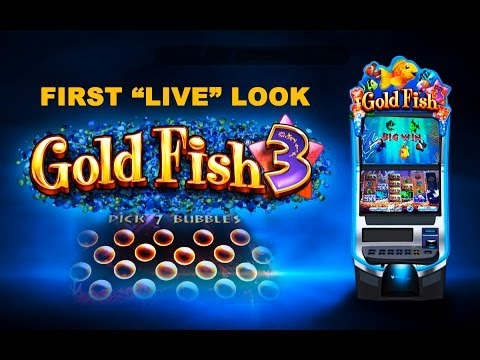 Video Online casino slots tricks