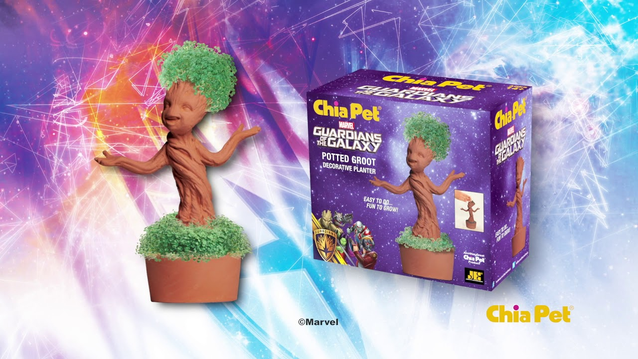 Potted Groot Chia Pet 06s Youtube