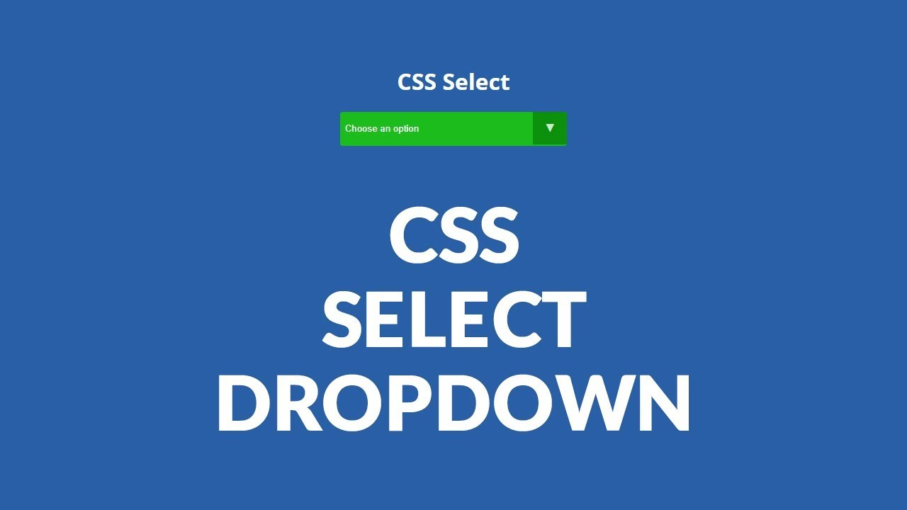 How to customize with CSS select options - HTML CSS ...