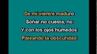 Alejandra guzman yo te esperaba (Karaoke)