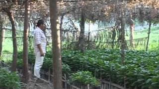 Videocartas desde Huehuetla - Educacion ambiental - El suelo