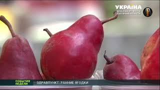 видео Как понять, что во фруктах и овощах есть нитраты