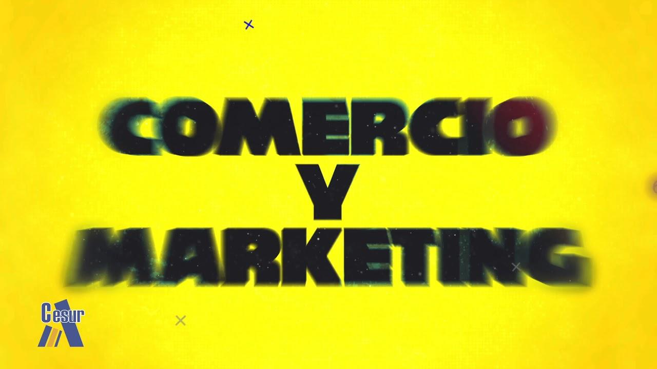 Técnico Superior En Marketing Y Publicidad Cesur