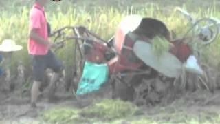 rice harvester machine,paddy rice harvester machine for sale