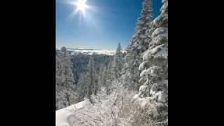 air of december - edie brickell & the new bohemians