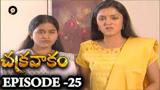 Episode 25 | Chakravakam Telugu Daily Serial