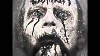 Caliban - Feasting On The Blood Of The Insane(Cover)
