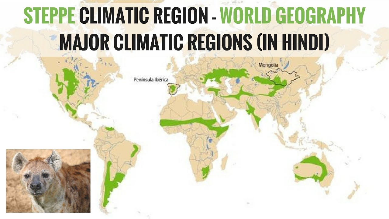Steppe climate region world geography major climatic regions in steppe climate region world geography major climatic regions in hindi gumiabroncs Images