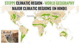 Steppe Climate Region - World Geography Major Climatic Regions (in Hindi)