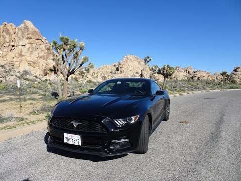 My 2017 Ford Mustang Rental