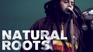 NATURAL ROOTS - Product Promo