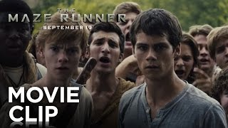 "The Maze Runner | ""Good Job"" Clip [HD] 