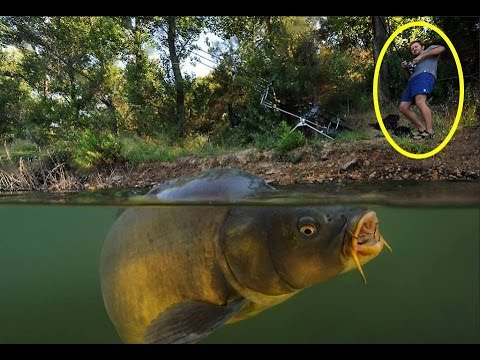 Thumbnail: Top 17 Shocking Fishing Moments 2016 (Monster,Fish,Crazy,Catfish,Funny)