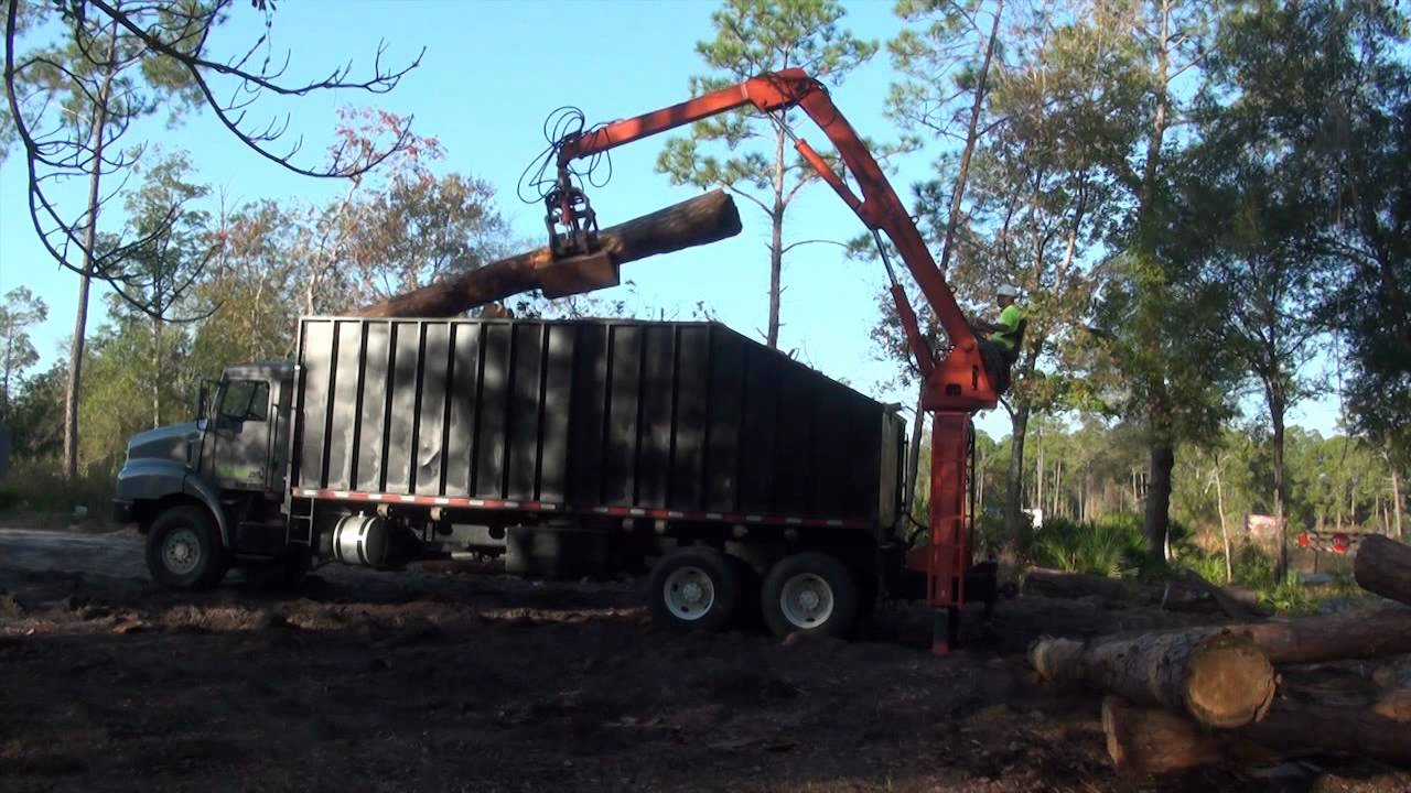 orlando tree service grapple truck loading logs for an