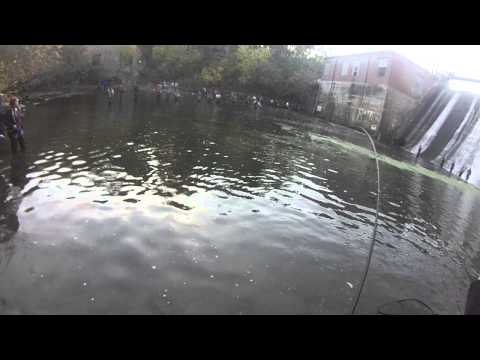 Combat fishing in olcott new york in 18 mile creek youtube for Olcott ny fishing report