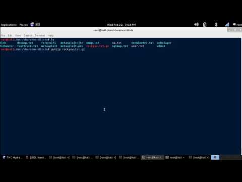 Linux Tutorial - How to use GunZip to Extract a Compressed.gz File. [Kali Linux]