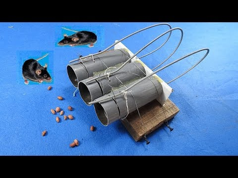 Easy mouse traps Part 5 - PVC Pipe/classic mouse traps-[Piece of Paper]