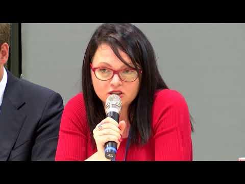 Violeta Moskalu, Global Ukraine
