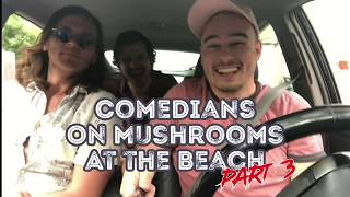 Comedians On Mushrooms At The Beach (Part 3)