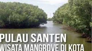 Pulau Santen Wisata Mangrove di Kota Banyuwangi,Tempat Kejuaraan Kano