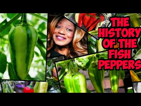 The History Of The Fish Pepper