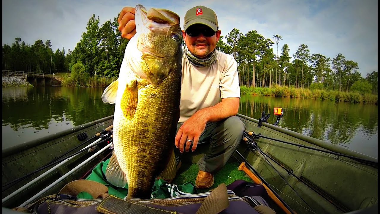 how to catch giant summer bass fishing 12 inch worms and