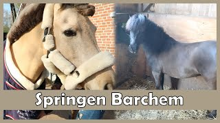 foutloos gesprongen in Barchem! |PaintedPony